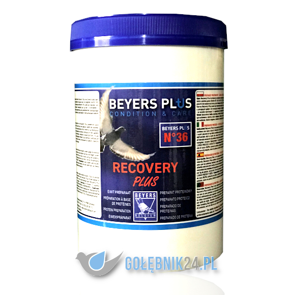 BEYERS - RECOVERY PLUS