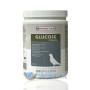 Versele-Laga – Glucose + Vitamins – 400g